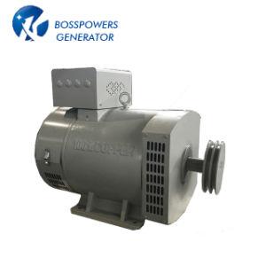 3 단계 Stc 솔 10kw 발전기 가격