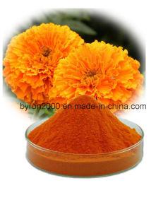 La zéaxanthine Lutéine Marigold Extrait de haute qualité