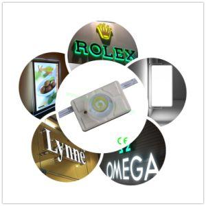 High-Power 38grados CREE SMD3535 Módulo LED con lentes para caja de luz/Canal Carta/logotipo de acrílico de firmar con 3 años de garantía