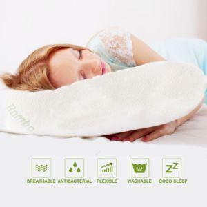Cuscini comodi resistenti della polvere e Hypoallergenic dell'acaro di memoria della gomma piuma