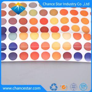 Impreso de Color personalizado de la bolsa de jalea de PVC con cubierta de plástico