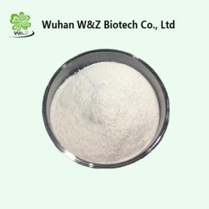 Het Ruwe Poeder 2-amino-6-Methylheptane (DMHA) CAS 543-82-8 van het gewicht van het Verlies