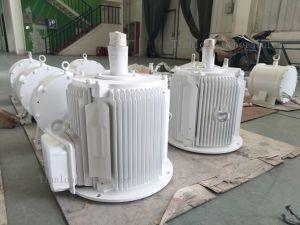 Ffl-5kw/100rpm/DC240V 영구 자석 발전기 (PMG/PMA/Hydro)