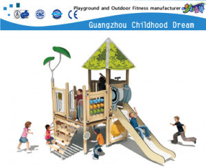 De populaire Kleine Apparatuur van de Speelplaats van de Kinderen van de Grootte Openlucht (hd-5206)