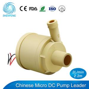 Food Grade 6V 12V purificateur d'eau de la pompe avec la certification CE