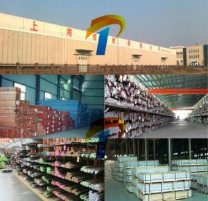 X2crnimon22-5-3 de Staaf van de Pijp van de Plaat van het roestvrij staal, de Leverancier van China