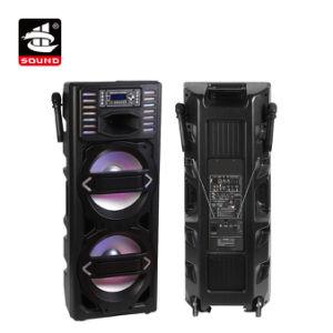 De 15 pulgadas de doble luz de gran potencia del sistema de PA altavoz portátil Bluetooth (BT-53215PS-WB (LED)