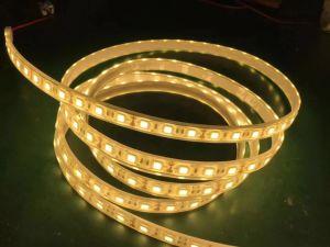 CRI95/CE/ETL RoHS/AEA 2700-3200LED de 60K/M tiras de LED flexible