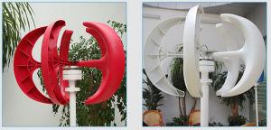 300W de verticale Generator van de Wind van Maglev van de Prijs van de Turbine van de Wind van de As