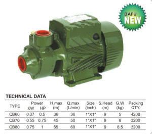 CER Approved Cast Iron Qb Water Pump (QB Serien)