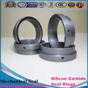 Карбид кремния (SiC) Reaction-Bonded уплотнение из карбида кремния (Respirable часть)