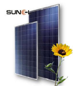 240W多結晶性太陽モジュールSNM-P240 (60)