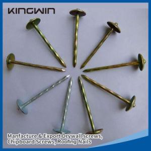 Parapluie de la tête de clous de toiture pour l'Éthiopie marché avec un bon prix