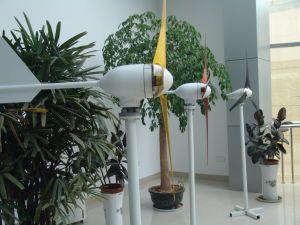 Generador de viento horizontal chino del eje 400W para la venta