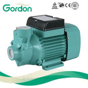 Zusatzwasser-Pumpe des elektrischen Messingantreiber-Qb60 mit Peilung