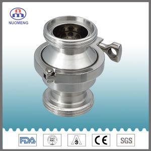 Valvola di ritenuta filettata Maled dell'acciaio inossidabile (Iso-Nessuna. RZ4210)