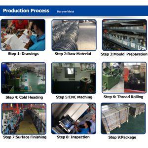 Le métal SGS prouvé produits Vis et écrou en acier au carbone