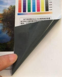 Растворитель самоклеящаяся виниловая пленка на наклейке 100микрофон для печати для установки вне помещений