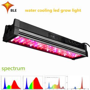 2019 Nueva alta eficiencia de 400W LED de amplio espectro de luz crecer