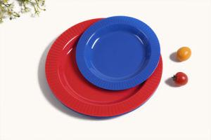 Cycle de promotion de la FDA Food plaque en plastique