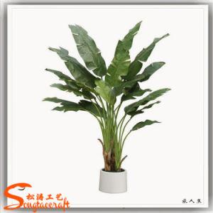 "Plantas artificiais Plantas "" Bonsai "" Bananas decorativas"