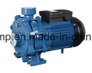 Nueva bomba de agua de Centrifigual del impulsor del doble del diseño