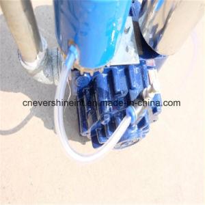 Bomba de Vácuo de lâmina rotativa para máquina de ordenha móvel