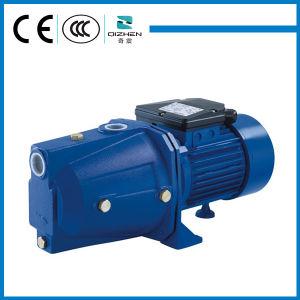 0.5 HP serie JET eléctrico Self-Priming Limpie la bomba de agua para riego