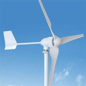 De permanente Turbogenerator van de Wind van de Generator van de Magneet 24V 48V 800W