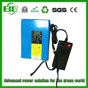10ah電気トロリー中国OEM/ODMの工場からの24のボルトのリチウムイオン電池の充電電池李イオン電池