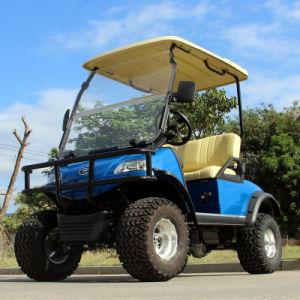 Carrito de golf de caza con el canasto (DEL2022D, 2asiento)