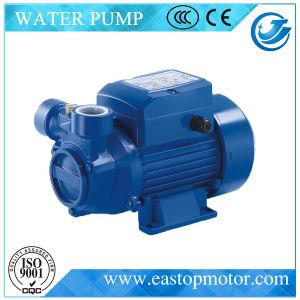 Pm Submersible Pumps per Aquaculture con Castiron Body