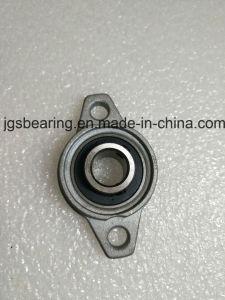 Fornitore del cuscinetto del cuscinetto UC206 Cina dell'inserto di Blcok del cuscino