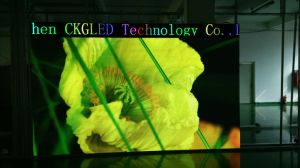 屋内フルカラーの使用料のLED表示パネルP3.91/P4.81/P6.25 SMD2020