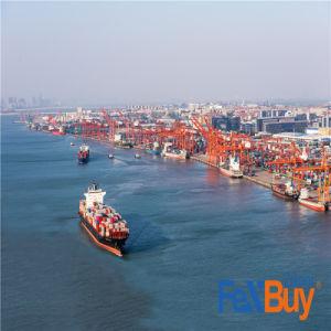 Barato y agente de envío especial de la navegación marítima a Amazon/Canadá/EE.UU.