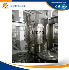 Automatische het Vullen van de Drank van de Fles van het Glas Aangepaste Machine
