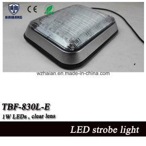 Plaza de la luz estroboscópica LED de alta potencia de las luces de advertencia de montaje en superficie (TBF-830L-E)