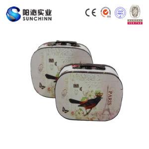 Borsa del sacchetto della borsa del regalo delle signore (SCMH00028)