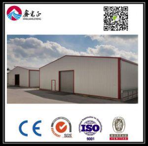 Magazzino personalizzato alta qualità della struttura d'acciaio (BYSS004)