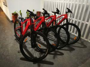 2019 Novo Modelo 29polegadas bicicleta eléctrica de Montanha