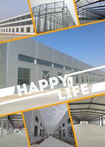 A China fez uma estrutura de aço/Oficina/Depósito de fábrica