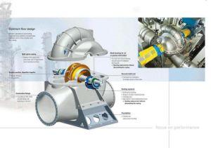 Pompa centrifuga di caso spaccato di doppia aspirazione della singola fase con il motore