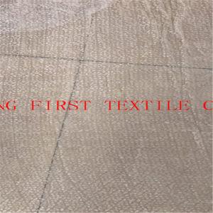 Soie blanche/rayonne tissu de velours avec Burn out