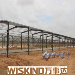 Einfach Stahlkonstruktion-Geflügel-Haus zusammenbauen