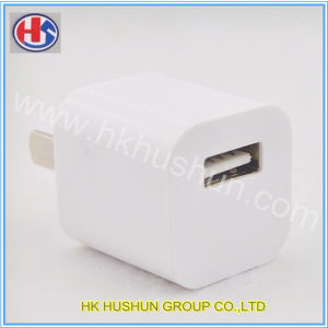 Good all'ingrosso Quanlity Charge Plug per Apple (HS-CP-001)