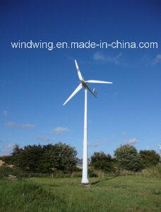 세륨 승인되는 10kw 수평한 풍차 발전기