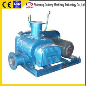 Dsr150V Qualitäts-und hohe Drehgeschwindigkeits-trockener Typ Vakuumpumpe-Wurzel-Gebläse für ihn Eisen- und Stahlindustrie