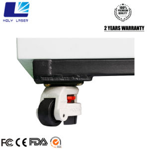 High-Frequency machine à gravure laser 3D avec la CE