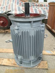 75kw com 500rpm Gerador eólico Vertical/Gerador de Íman Permanente