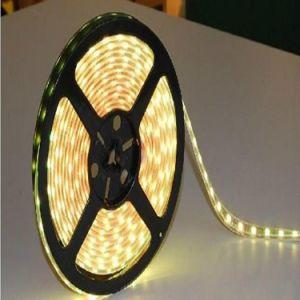 Novíssimo 3528 tira RGB LED endereçável tiras vestível para decoração